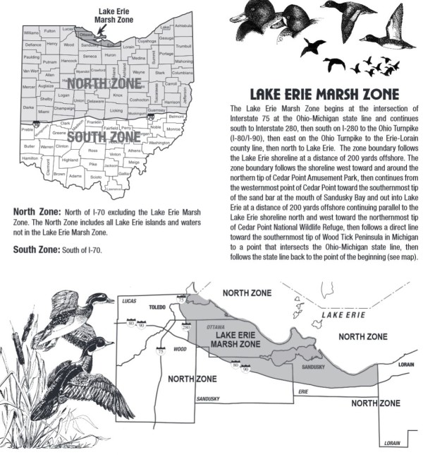 ohio duck season