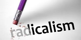 Toward a Radical IR