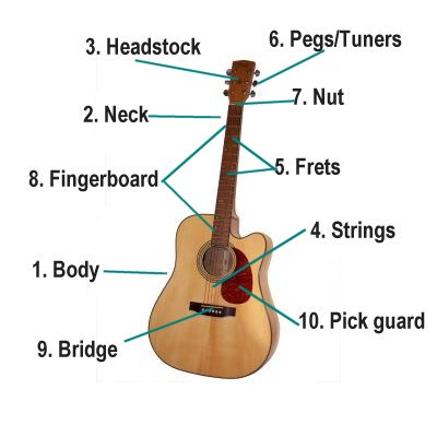 guitar parts diagram pickleball on tennis courts music for kids of the