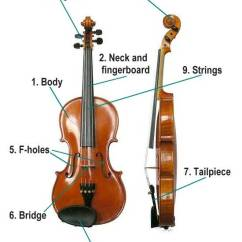 Bass Neck Diagram Fog Light Wiring With Relay Music For Kids: Parts Of The Violin