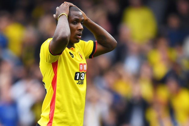 Image result for Watford have confidence in Ighalo – Mazzarri