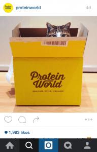 Protein Insta