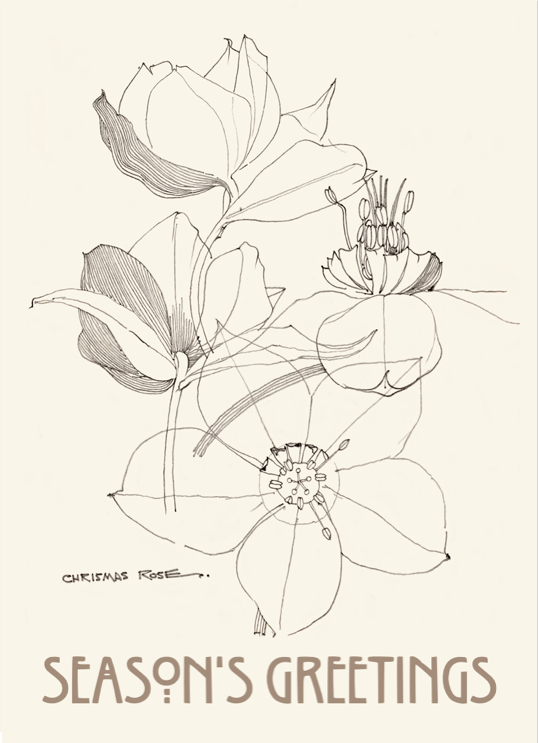 Charles Rennie Mackintosh 'Crismas Rose' card.