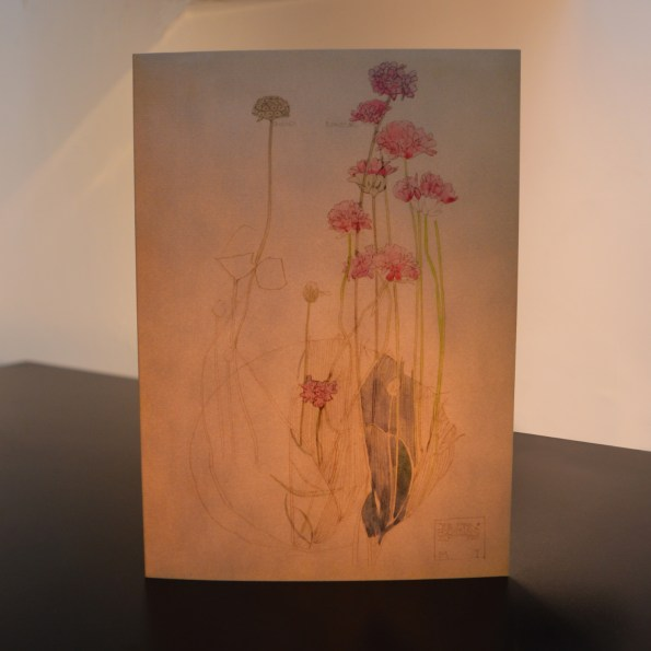 Charles Rennie Mackintosh - Sea Pinks Art Card from Duille
