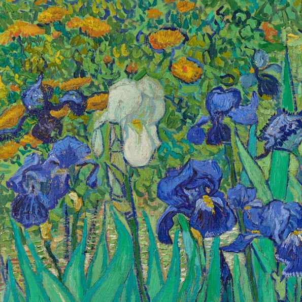 Irises-Vincent van Gogh-detail