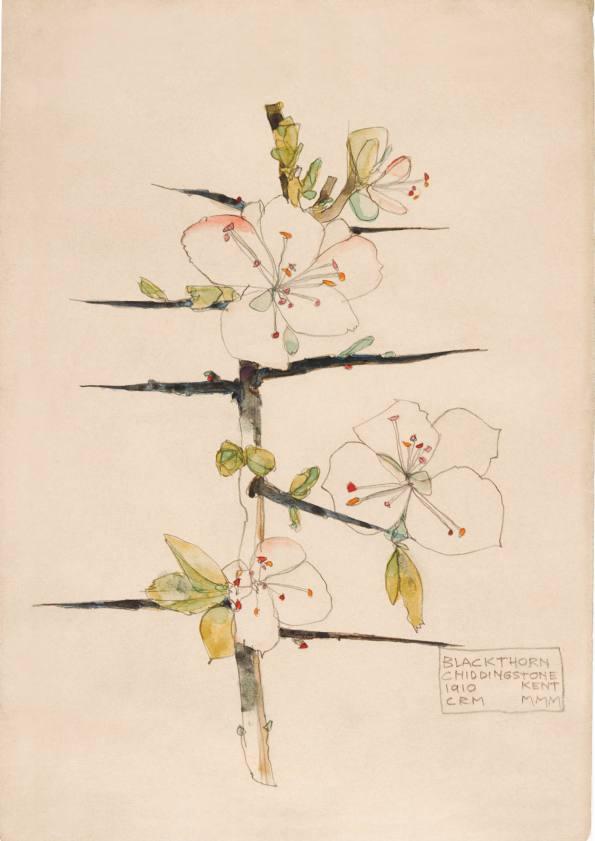 Blackthorn, Chiddingstone. Charles Rennie Mackintosh.