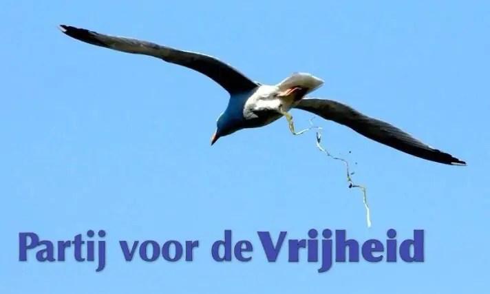 Wat heeft de PVV in elf jaar bereikt?
