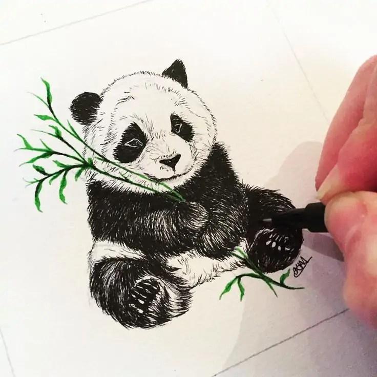Hoe komt de panda aan z'n tekening?