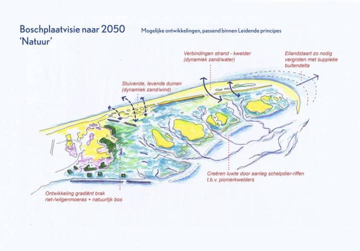 Boschplaat 2050