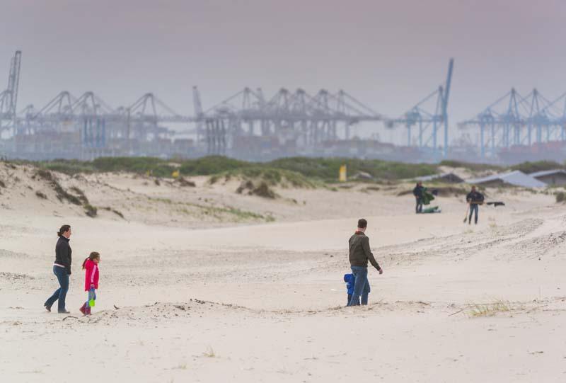 Van Dixhoorndriehoek: jonge duinen Zuid-Holland: 17 september, 19.30 tot 21.00
