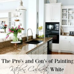 Paint Kitchen Cabinets White Caddy Pros And Cons Of Painting Duke Manor Farm