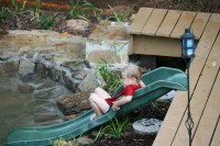 Backyard Duck Pond | Outdoor Goods
