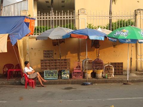 Đặc sản chính của chợ là sâu bọ