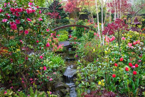 Vườn hoa giữa mùa xuân ở khu vực thấp của khu vườn.