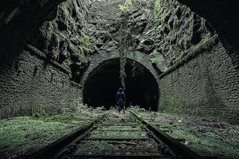 Các cây rêu mọc bám đầy vào các bức tường và trần của một đường hầm bỏ hoang đã lâu.