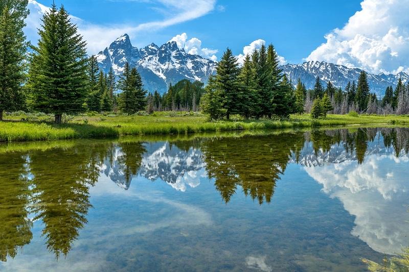 Top 10 thảo nguyên xanh thơ mộng nhất trên thế giới