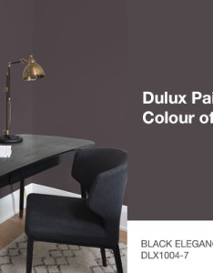 Black elegance dlx is  statement making infused with an undertone of the deepest brown that creates intimate sophisticated setting also dulux colour  decor trends rh