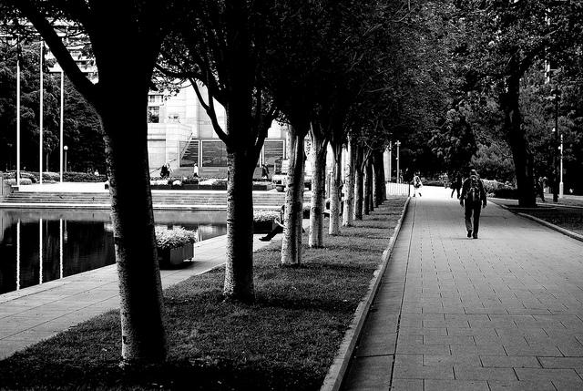 Man walks through park - Photo by VirtualWolf @ Flickr