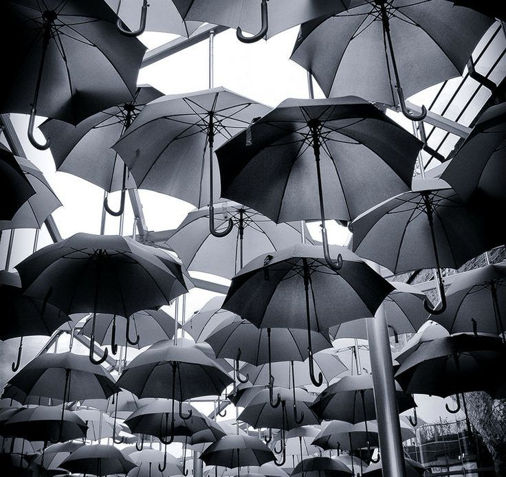 Why Businesses Should Consider Using Umbrella Companies