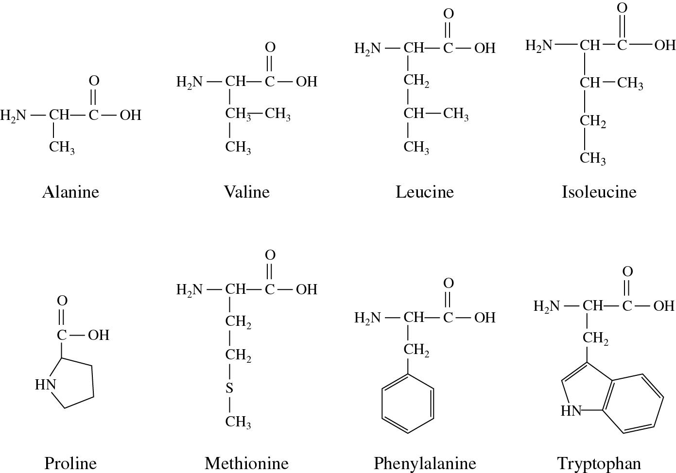 Nonpolar Hydrophobic Amino Acids Of Biochemistry