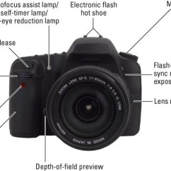 Slr Camera Diagram Real Human Lung Digital Cameras Photography For Dummies Cheat Sheet Image0 Jpg