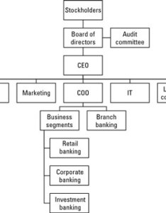 The next figure offers  generic organizational structure of an islamic bank note that   sharia supervisory board may report directly to also compare structures commercial and banks dummies rh