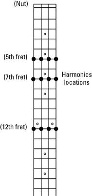 How to Tune the Bass Guitar to Itself with the Harmonics