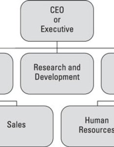 It allows for the logical distribution of responsibility and decision  making level appropriate weights to  larger base also solidify your organization chart improve time management dummies rh