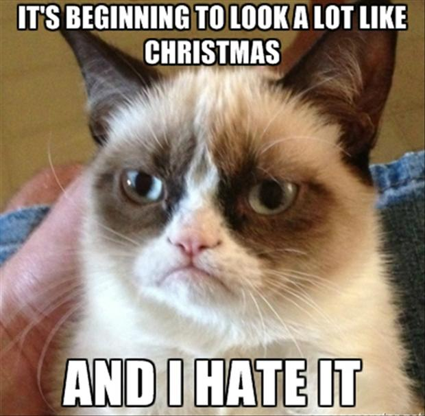 https://i0.wp.com/www.dumpaday.com/wp-content/uploads/2012/12/grumpy-cat-its-beginning-to-look-a-lot-like-christmas.jpg