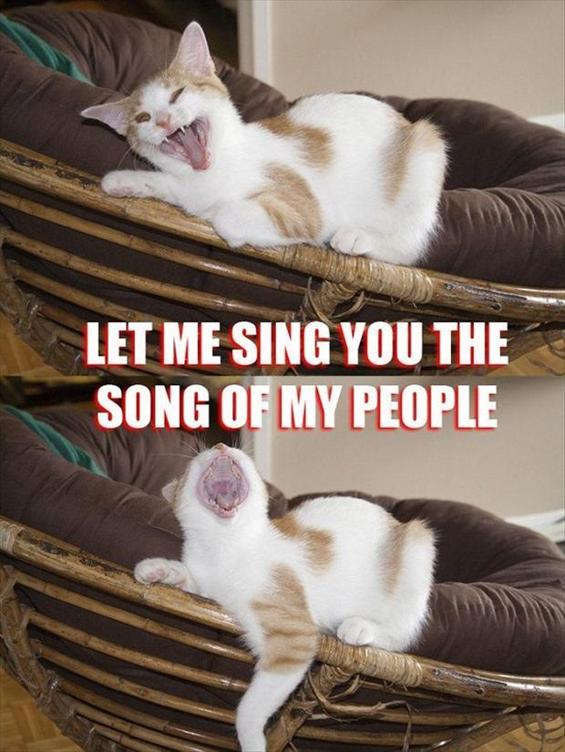 Image result for sing the song of my people