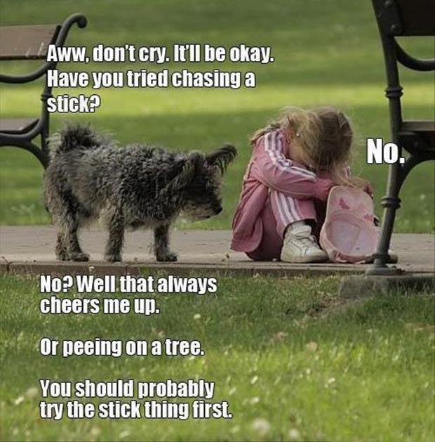 dog-helps-little-girl.jpg (620×629)