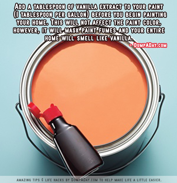 DumpADay Life Hacks- Vanilla Scented Paint