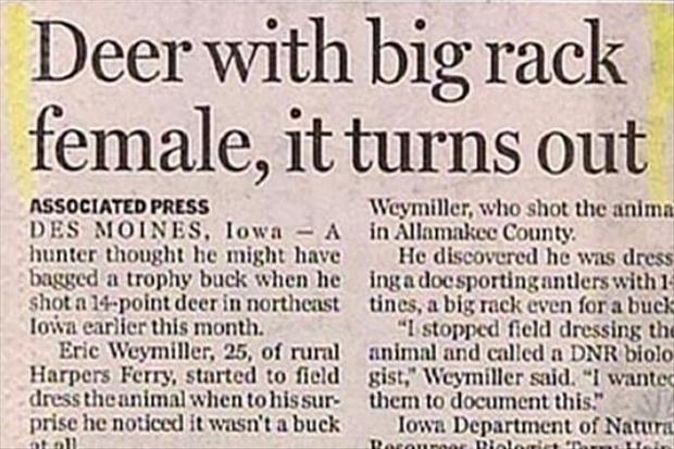 fun headlines (2)