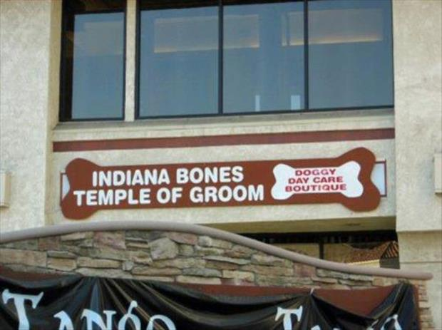 funny business names (17)