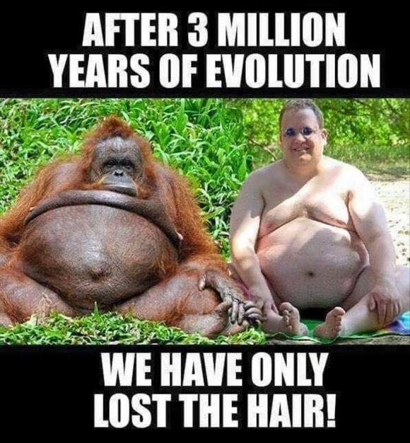 this is evolution