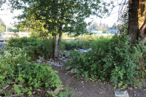The approach to a drug use site patrolled regularly by the Warmland Sharps Disposal Team. This site is off Duncan Street (photo by Duncan Taxpayers)