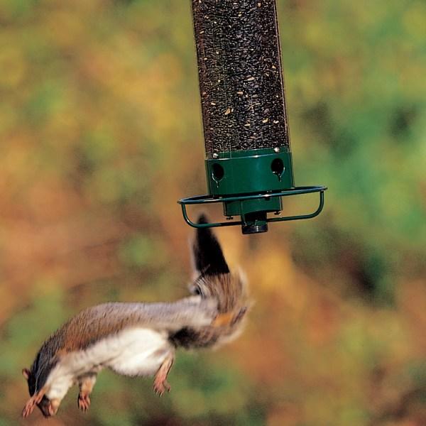 Yankee Flipper Squirrel Proof Bird Feeder
