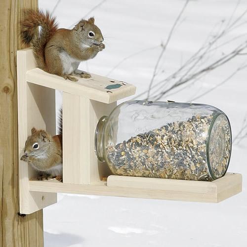 Duncraftcom Duncraft 5729 Squirrel Jar Feeder