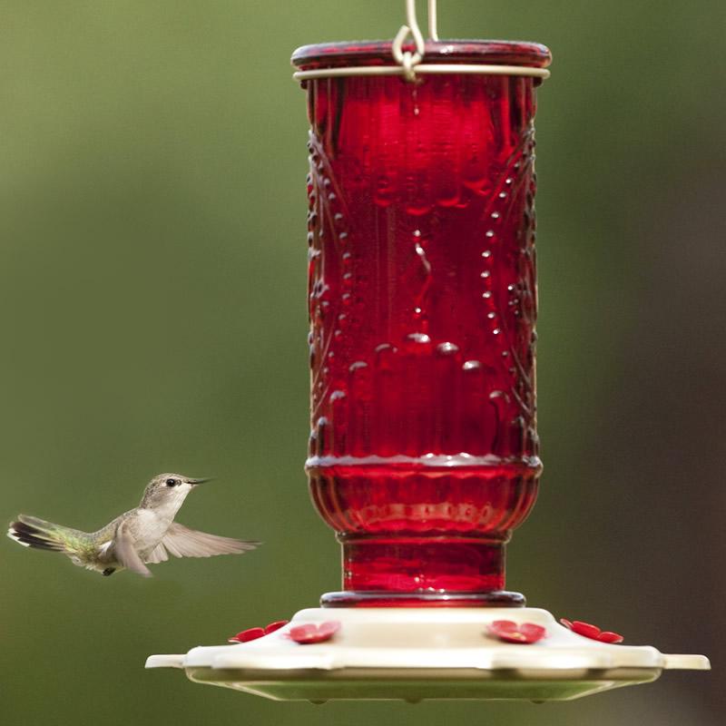 Duncraftcom Red Vintage Hummingbird Feeder