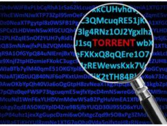 Il provider come capisce quando scarico da torrent