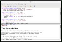 Perl  editor
