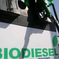 Sektor Pertambangan Berpotensi Serap 421 Ribu KL Biodiesel