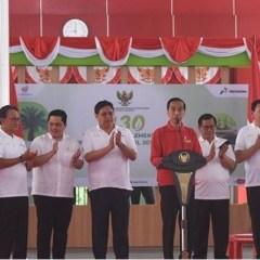Jokowi Klaim B30 Bisa Hemat Devisa Rp63 Triliun