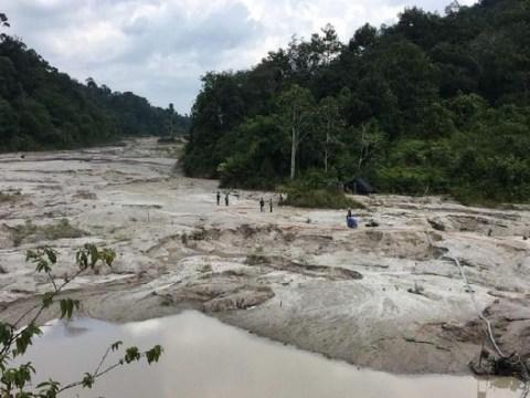 Walhi: Banjir Kalsel Akibat Alih Fungsi Hutan Menjadi Kebun Sawit dan Tambang