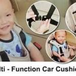Multi Function Car Cushion