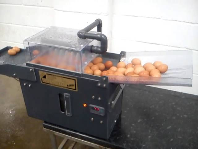 MS Technologies Egg Washers  Dunogan Farm Tech