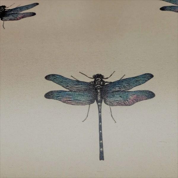 dragonfly clark