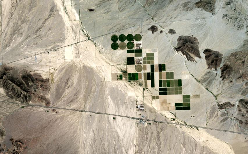 Suudi Arabistan'ın Arizona'da oluşturduğu tarım arazileri