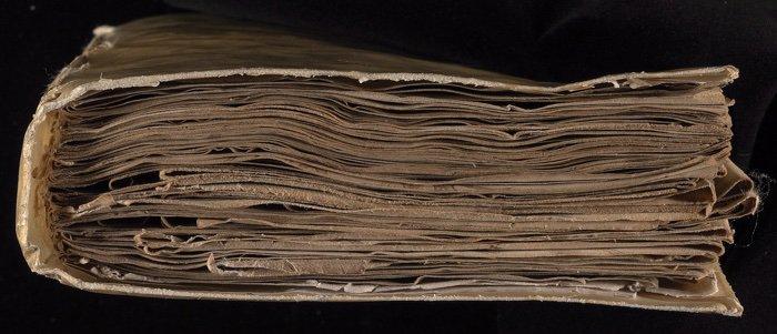 825-voynich-manuscript-3