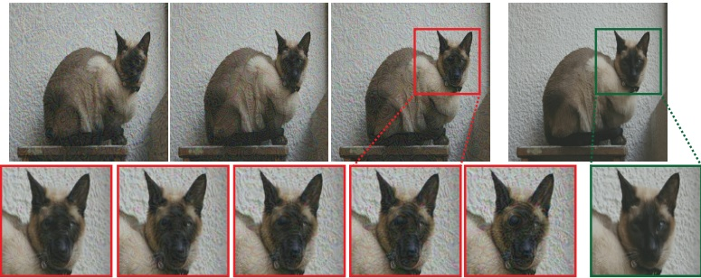cat-image (1)